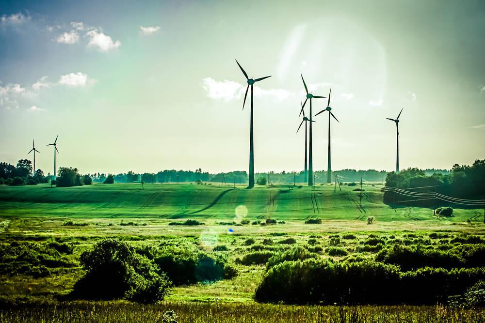 La empresa apuesta por las energías renovables